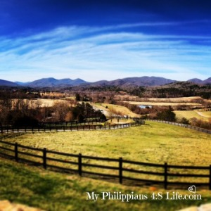 Brasstown Valley by Me